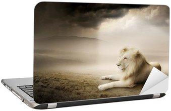 Nálepka na Notebook Bílý lev při západu slunce