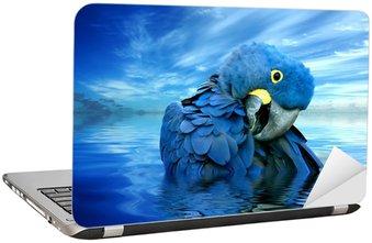 Nálepka na Notebook Blauer Papagei