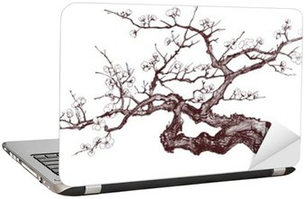 Nálepka na Notebook Cherry tree