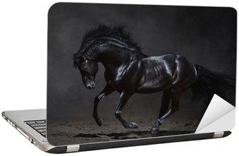 Nálepka na Notebook Cval černého koně na tmavém pozadí