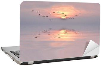 Nálepka na Notebook Dawn of jemných barvách