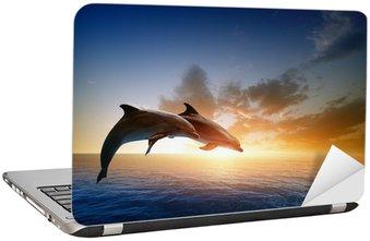 Nálepka na Notebook Delfíni na lyžích