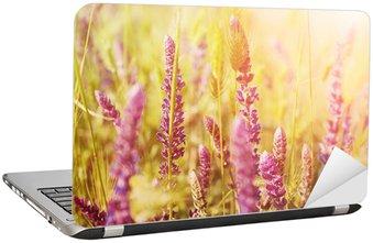 Nálepka na Notebook Fialová louka květ