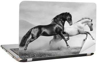 Nálepka na Notebook Koně běžet