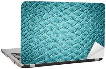 Nálepka na Notebook Krokodýlí tyrkysová textury kůže