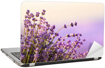 Nálepka na Notebook Lavender květiny kvetou letní čas