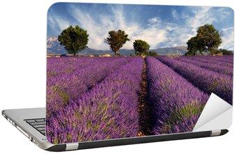 Nálepka na Notebook Lavender pole v Provence, Francie