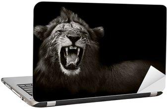 Nálepka na Notebook Lion zobrazení nebezpečné zuby