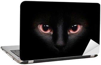 Nálepka na Notebook Oči divoká černá siamská kočka skrývá v temnotě