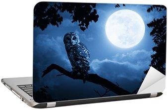 Nálepka na Notebook Owl osvětlené úplňku na Halloween