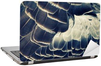 Nálepka na Notebook Ptačí peří pozadí