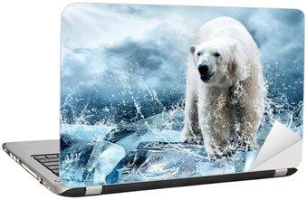 Nálepka na Notebook White Polar Bear Hunter na ledě v kapky vody.