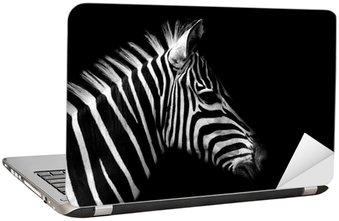 Nálepka na Notebook Zebra