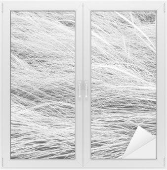 Nálepka na Sklo a Okna Černobílá fotografie, zblízka dlouhé louky textury backgrou
