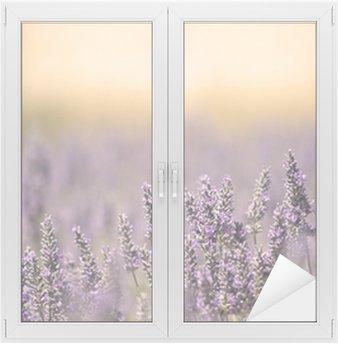 Nálepka na Sklo a Okna Letní louka s květinou. Lavender.