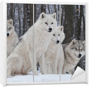 Nálepka na Skříň Arctic Wolf Pack