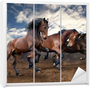 Nálepka na Skříň Divoký skok bay koně