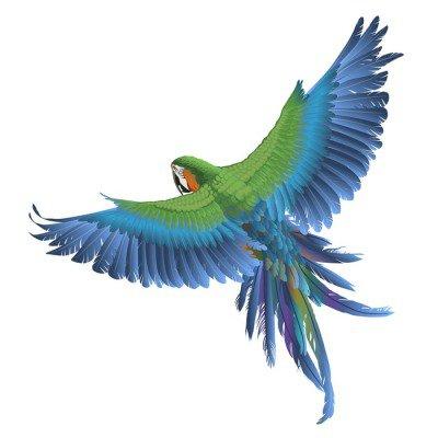 Nálepka na Stěny Papoušek