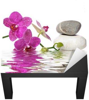 Nálepka na Stůl a Pracovní Stůl Jednoduše krásné orchideje