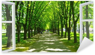Nálepka Pixerstick Otevřelo okno do krásného parku s mnoha zelenými stromy