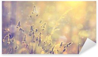 Nálepka Pixerstick Retro rozmazané trávníku při západu slunce s světlice. Vintage fialový červená a žlutá oranžová barva efekt filtru použity. použity selektivní zaměření.
