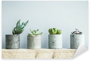Nálepka Pixerstick Sukulenty v DIY betonu hrnci. Skandinávský interiér pokoje výzdoba