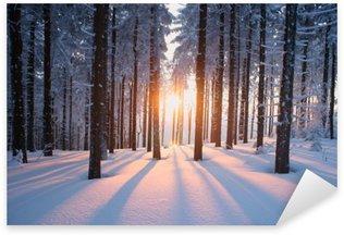 Nálepka Pixerstick Západ slunce v lese v zimním období