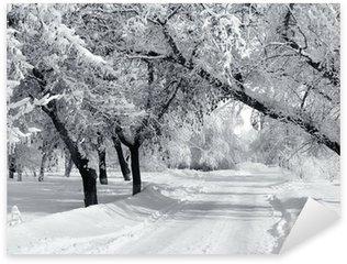 Nálepka Pixerstick Zimní park, krajina