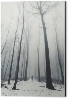 Obraz na Aluminium (Dibond) Człowiek w lesie z wysokich drzew w zimie
