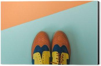 Obraz na Aluminium (Dibond) Płaski lay zestaw mody: kolorowe vintage buty na kolorowym tle. Widok z góry.