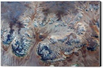 Obraz na Hliníku (Dibond) Alegorie podvodní květiny, kámen závod fantazie, abstraktní naturalismus, abstraktní fotografie pouště v Africe ze vzduchu, abstraktní surrealismus, mirage, fantazie tvoří v poušti, rostliny, květiny, listy,