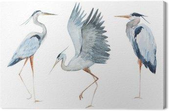 Obraz na Plátně Akvarel volavka ptáků