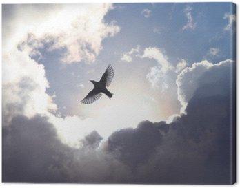 Obraz na Plátně Anděl Bird v nebi