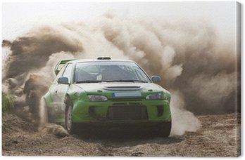 Obraz na Plátně Automobilový závod