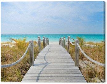 Obraz na Plátně Caribbean beach