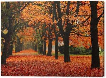 Obraz na Plátně Červený na podzim v parku