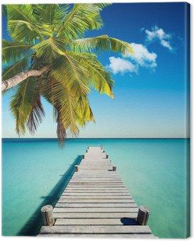 Obraz na Plátně Coconut Beach Dovolená