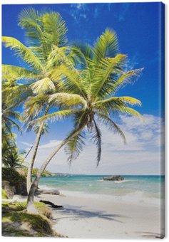 Obraz na Plátně Cumana Bay, Trinidad