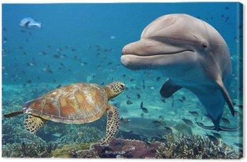 Obraz na Plátně Delfín a želva pod vodou na útesu