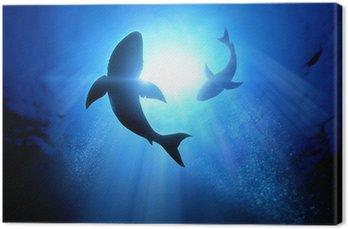 Obraz na Plátně Great White Sharks