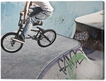 Obraz na Plátně Im BMX Skatepark