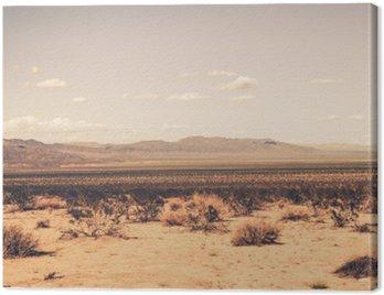 Obraz na Plátně Jižní Kalifornie Desert