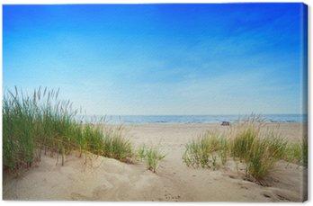 Obraz na Plátně Klidná pláž s dunami a zelené trávy. Klidné moře