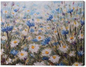 Obraz na Plátně Květiny. Glade z chrpy a sedmikrásky. Letní květiny.