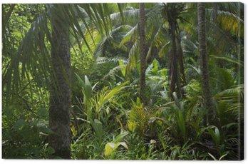 Obraz na Plátně Lush Tropical Jungle Rainforest pozadí