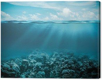 Obraz na Plátně Moře nebo oceán pod vodou hluboké přírodní pozadí