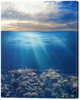 Obraz na Plátně Moře nebo oceánu podmořský život při západu slunce obloha