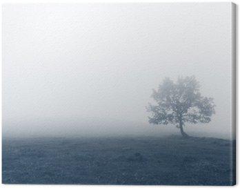 Obraz na Plátně Osamělý strom s mlhou