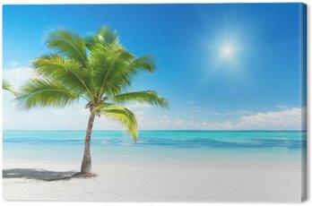 Obraz na Plátně Palmy a moře