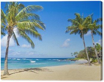 Obraz na Plátně Palmy na písečné pláži na Havaji